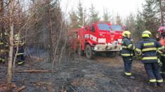 Požár lesa v Kolelači - 3. 4. 2019