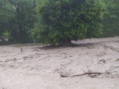 Přívalové deště v Pitíně a na Pitínských pasekách - 13.6.2020